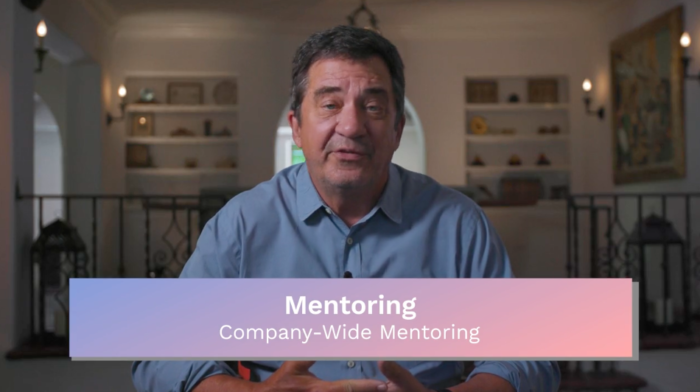 Mentoring: Company-Wide Mentoring