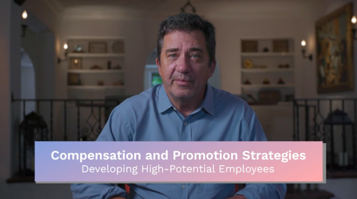 Compensation & Promotion: Developing High-Potential Employees