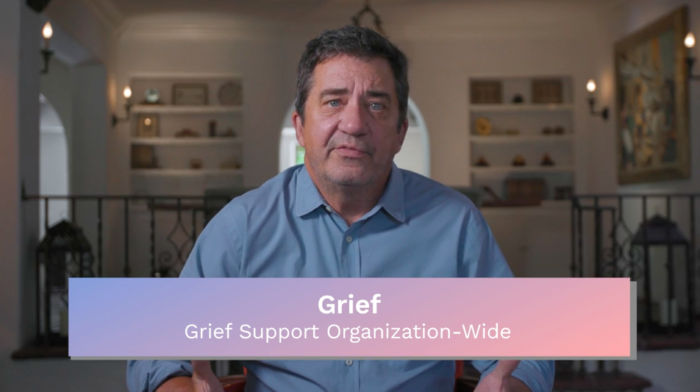 Grief: Grief Support Organization-Wide
