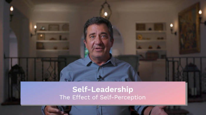 Self-Leadership: The Effect of Self-Perception