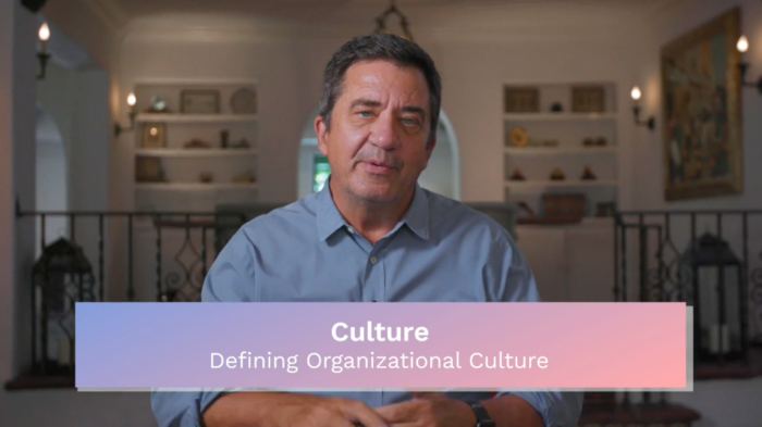 Culture: What is Organizational Culture